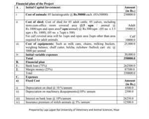 Dairy Farming Project Report for Bank Loan PDF